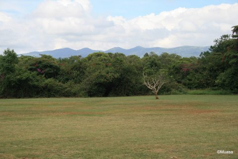 Ngong Hills, seen from Karen Blixen`s Farm